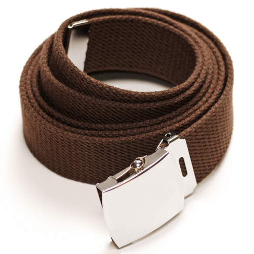 Long Casual Web Belt - Brown
